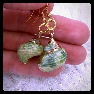 Pretty Seashell Earrings